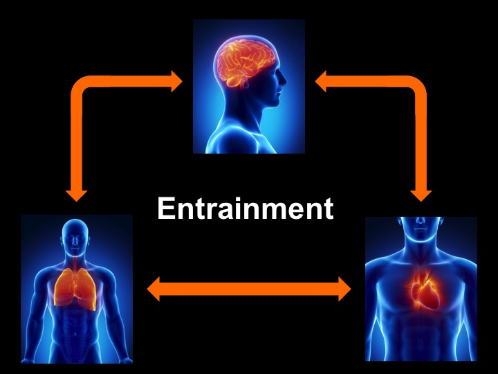 Entrainment - heart, lungs, brain wave state
